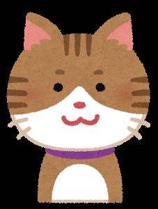 cat1_smile